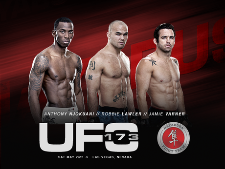 UFC 173: Team Hayabusa Breakdown