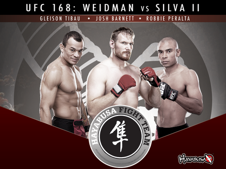UFC 168: Team Hayabusa Breakdown